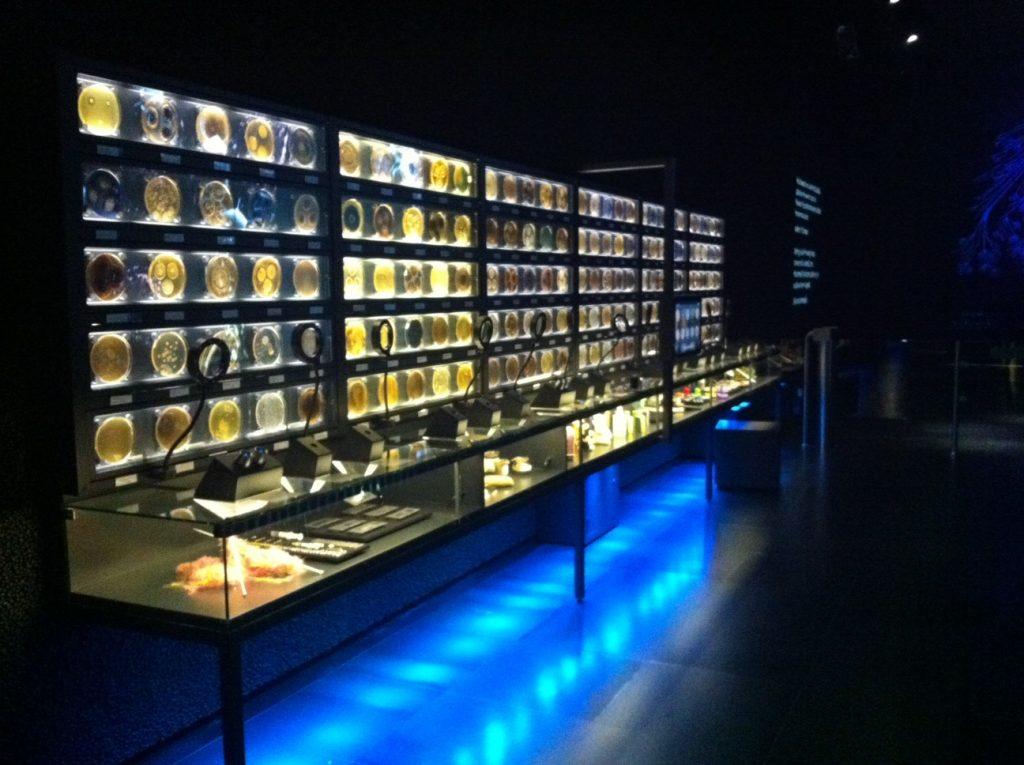 Купить билеты в музей микробов в Амстердаме