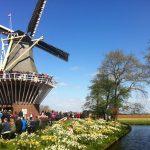 Экскурсии в парк Кекенхоф из Амстердама