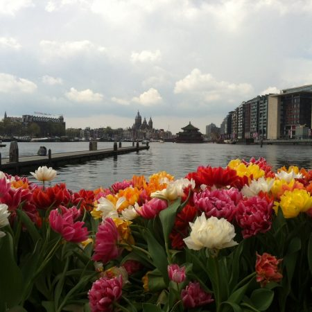 Фестиваль тюльпанов в Амстердаме 2017