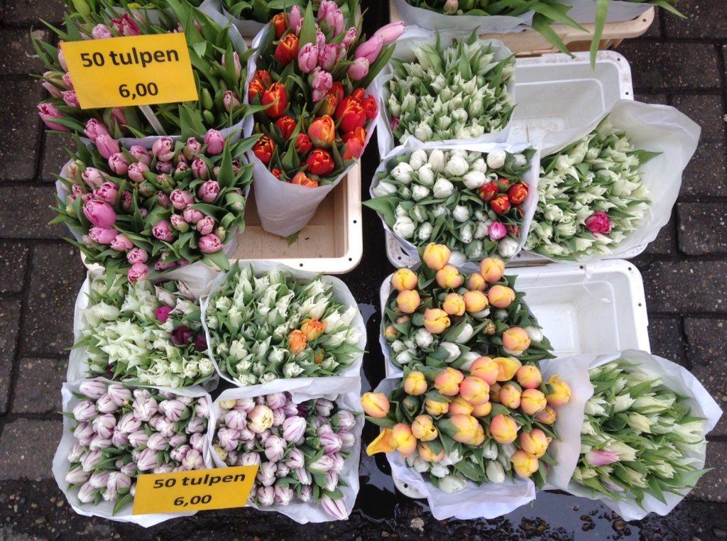 Цветочный рынок в Амстердаме, фото тюльпанов