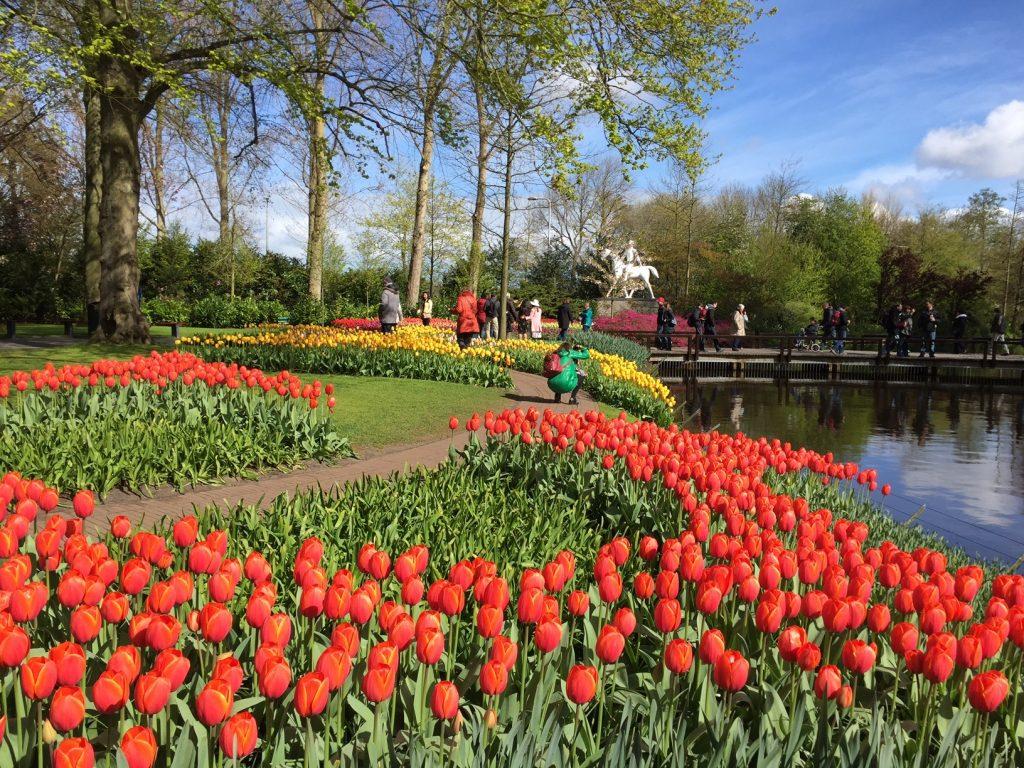 Кейкенхоф: все о парке тюльпанов в Голландии