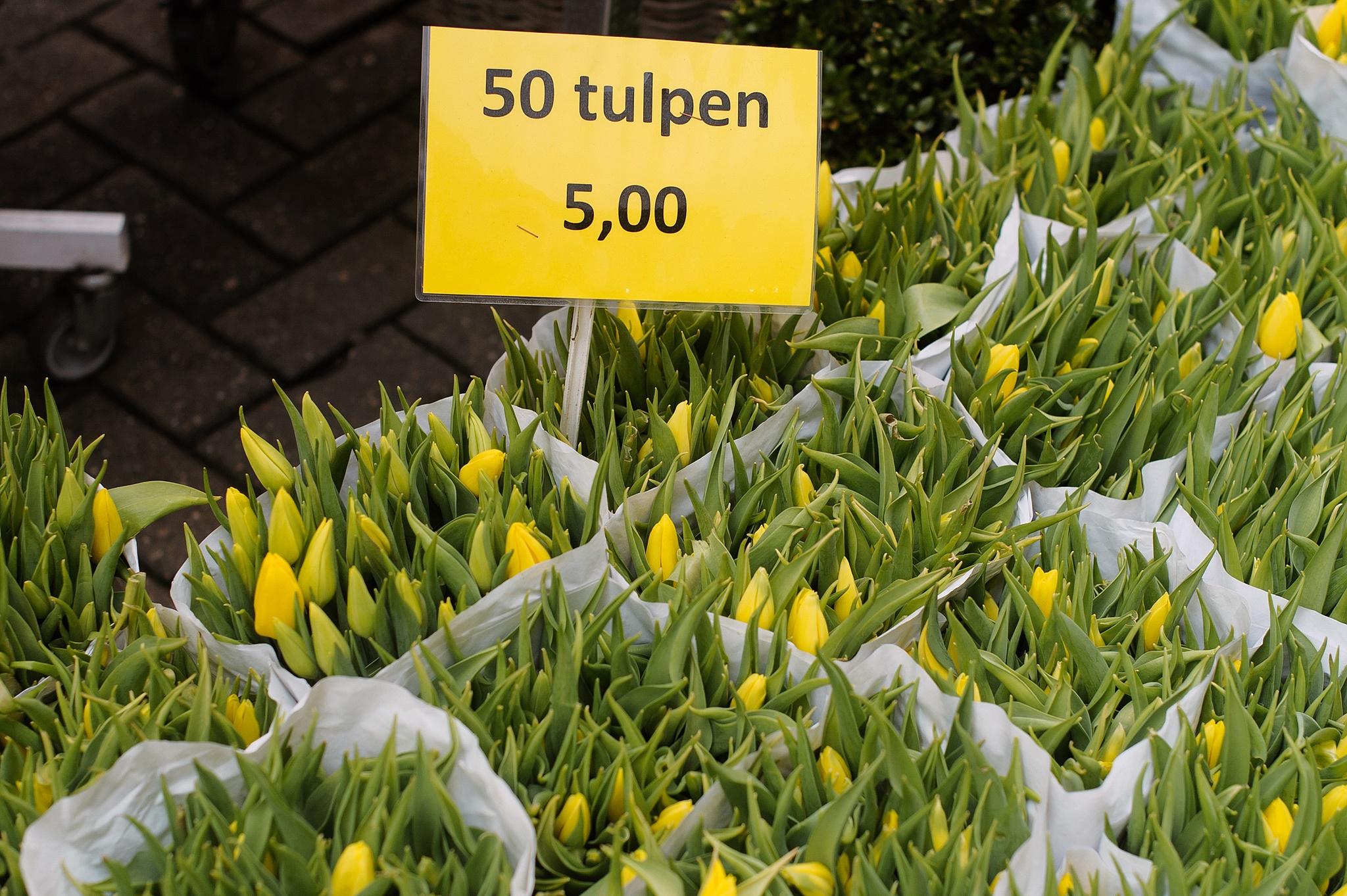 Цветочный рынок Амстердама. Тюльпаны. Цены