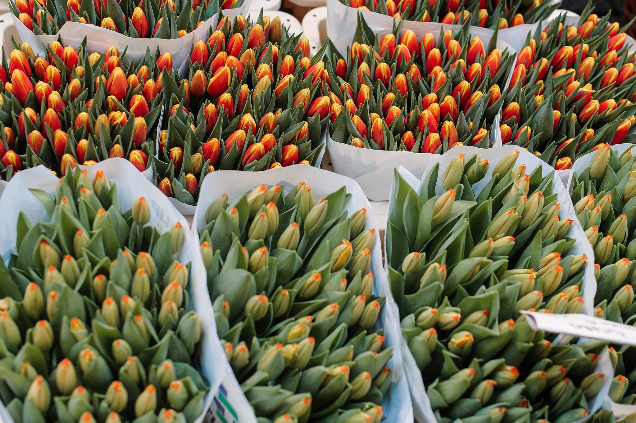 Flowermarket_11