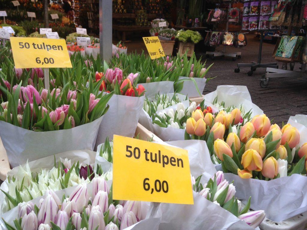 Цветочный рынок в Амстердаме, цены на тюльпаны