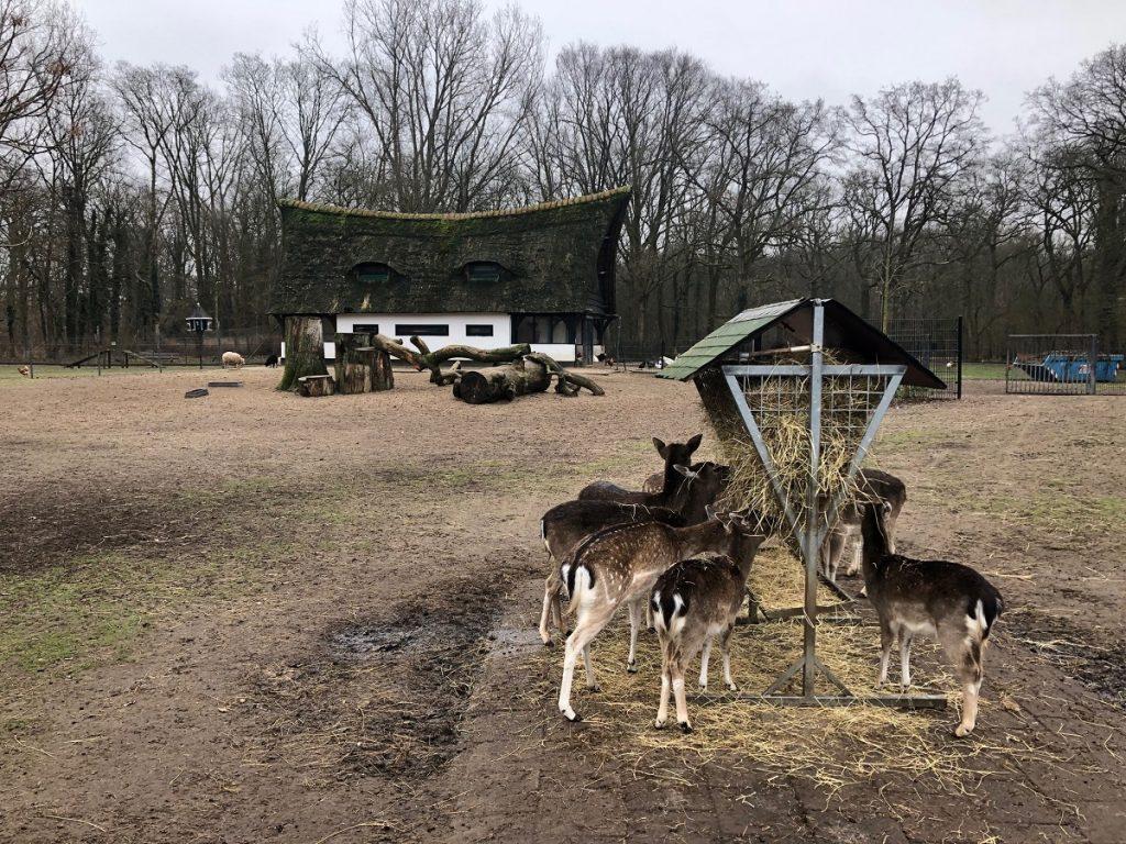 Ферма Hertenkamp Bloemendaal